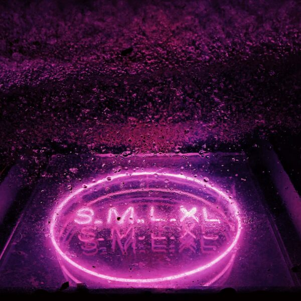 fioletowy neon z napisem s, m ,l, xl);